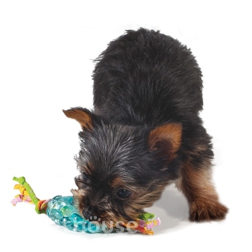 Petstages Mini orka pine cone chew - Орка мини шишка с канатиками, фото 2