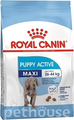 Royal Canin Maxi Junior Active, фото