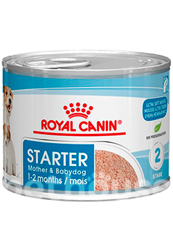 Royal Canin Starter Mousse, фото
