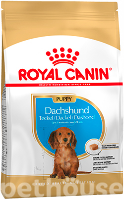 Royal Canin Dachshund Junior, фото
