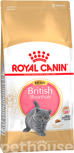 Royal Canin British Shorthair Kitten , фото 2