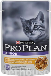 Purina Pro Plan Junior Chicken in jelly