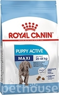 Royal Canin Maxi Junior Active (Puppy Active)